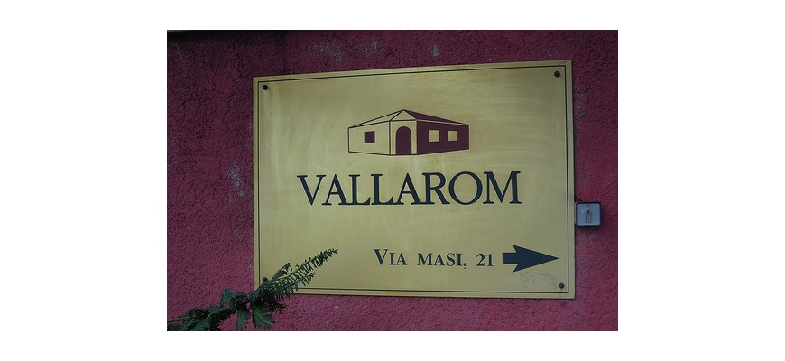 Organic wine and vegan Vallarom in Avio
